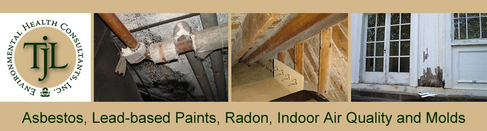 Charlottesville Mold Testing Mold Inspections Richmond